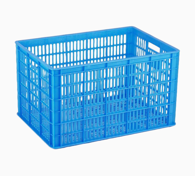 دوران مربع العفن الأزرق